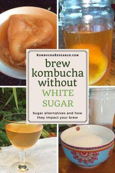Kombucha brewed with other sugars. Does kombucha need white sugar. Kombucha with Agave syrup. Kombucha with molasses. KOmbucha research. Kombucha Cocktail, Kombucha Benefits, Kombucha Flavors, Kombucha Scoby, How To Brew Kombucha, Elderberry Kombucha, Green Tea Kombucha, Kombucha Fermentation, Kombucha Drink