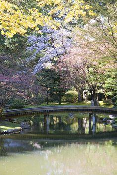 Bridge In Nitobe Memorial Garden-gently curved bridge