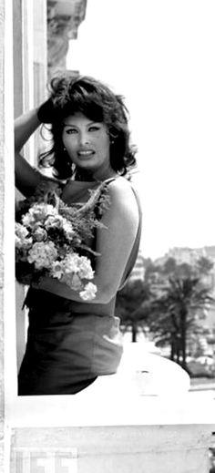 Sophia Loren at Cannes, May 1959.