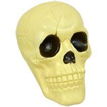"Bulk Plastic Halloween Skulls, 6"" at DollarTree.com"