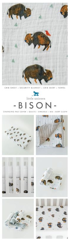 Our best selling print Bison!
