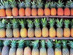 Rows and rows of tropical pineapple. Design Pop Art, I Need Vitamin Sea, Good Vibe, No Bad Days, Palmiers, Summer Of Love, Pink Summer, Summer Fruit, Summer 2014