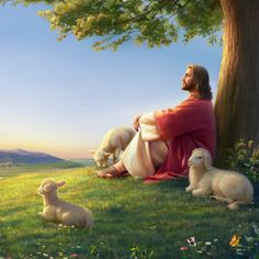 Jesus Pastor, Jesus Shepherd, Praise And Worship Songs, Pictures Of Jesus Christ, Padre Celestial, Bible Illustrations, Christian Pictures, Jesus Painting, Biblical Art