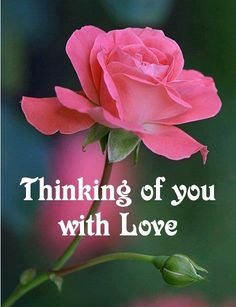Thinking of you with Love good morning Good Night I Love You, Good Morning Love, Good Morning Flowers, Morning Wish, Good Morning Images, Good Morning Quotes, Thinking Of You Images, Thinking Of You Quotes, Thinking Of You Today