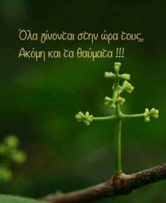 Greek Quotes, Self Improvement, Good To Know, True Stories, Jesus Christ, Wise Words, Affirmations, Best Quotes, Pray