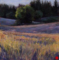 Summer Fields at Sunset by Amanda Houston