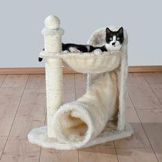 Arbre à chat Gandia