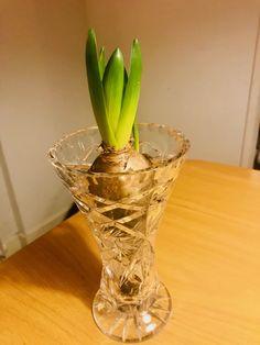 Planter Pots, Vase, Home Decor, Decoration Home, Room Decor, Vases, Home Interior Design, Home Decoration, Interior Design