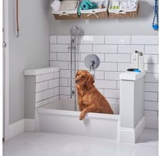 The 36 x Rectangular Molded Stone Mop Sink is designed to connect to a drain pipe. Mudroom Laundry Room, Laundry Room Remodel, Laundry Room Design, Laundry Room With Sink, Dog Room Design, Laundry Room Layouts, Laundry Area, Dog Tub, Mop Sink