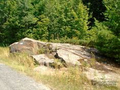 Most would call it a Turtle Rock but for the artist who created this it is formed into a dinosaur Rock on this Cambrian Shield taken off Tally Ho-Swords Road in Seguin Township Ontario.