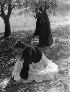 Clarence H. White. The orchard. 1902  [::SemAp Twitter || SemAp::]