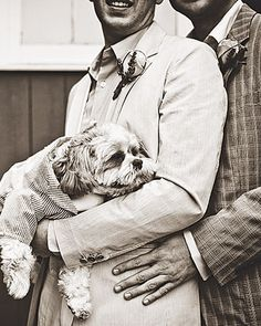 """The """"pooch of honor"""""""