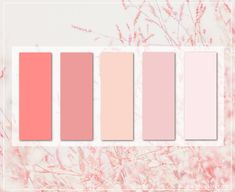 Coral Colour Palette, Spring Color Palette, Palette Art, Spring Colors, Pink Color, Colour Palettes, Pastel Pink, Coral Pink, Logo Color