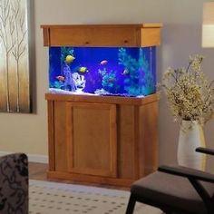 Aquarium Fish + H