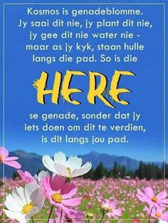 Prayer Quotes, Bible Quotes, Afrikaans Quotes, Morning Inspirational Quotes, Good Morning Wishes, Godly Woman, Prayers, Spirituality, Messages