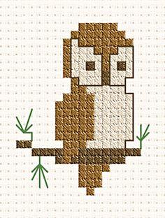 beginner owl