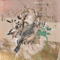 "Ophelia & Co. 'Upwards and Onwards' Graphic Art on Wrapped Canvas Size: 26"" H x 26"" W x 0.75"" D"