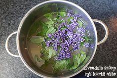 Egy korty nyár - levendula szörp - Lurkovarázs.hu - Kreatív feladatok gyerekeknek Cabbage, Vegetables, Blog, Mint, Cabbages, Vegetable Recipes, Blogging, Brussels Sprouts, Veggies