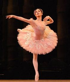 Artistic director and lead principal dancer of the English National Ballet. Former principal dancer with The Royal Ballet Sleeping Beauty Ballet, Sleeping Beauty Fairies, Tutu Costumes, Ballet Costumes, Ballet Russe, La Bayadere, Pretty Ballerinas, Russian Ballet, Ballet Photography