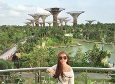 Instagram의 그림일기님: . . . #싱가폴 #싱가포르 #마리나베이샌즈 #가든스바이더베이 #아바타숲 #정원속도시 #바로앞에 #캬하 #다음엔야경보러와야지 #아쉬워