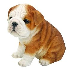 sitzender bulldog welpe hund leben wie figur statue haus garten neu delivers online tools that help you to stay in control of your personal information and protect your online privacy. Bulldog Pics, Bulldog Puppies, Dogs And Puppies, British Bulldog, French Bulldog, English Bulldogs, Pomeranians, White Gardens, Garden Statues
