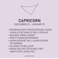 Zodiac Posts, Zodiac Memes, Zodiac Quotes, Capricorn Women, Gemini Woman, Sagittarius Astrology, Aries Zodiac, Capricorn Personality Traits, Guess My Zodiac Sign