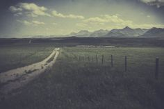 The Road Not Taken, Robert Frost, Stand By Me, Country Roads, Explore, Yellow, Travel, Life, Outdoor