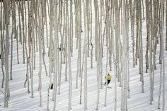 """skiing """"Tight trees at Deer Valley, Utah"""" Resorts, Flight Booking Sites, Beautiful World, Beautiful Places, Cool Pictures, Cool Photos, Hotel Safe, Serenity Now, Winter Love"""