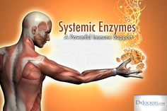Systemic Enzymes are a Powerful Immune Support - DrJockers.com