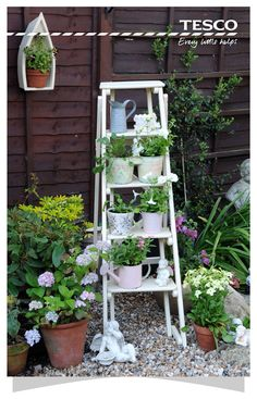 Spend the day building a vertical garden and get to enjoy more outside space. A ladder with small flower pots will add a touch of vintage style to your garden. Click for more vertical garden ideas. | Tesco Living