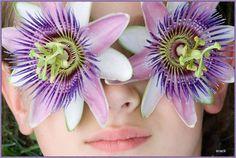 """Ein echter Mann hat nur Augen für eine Frau.  """"Die Optik entscheidet wer zusammen kommt  der Charakter wer zusammen bleibt!"""" —. Flower Power, Flowers, Passion Flower, Real Men, Acupuncture, Eyes, Woman, Royal Icing Flowers, Floral"""