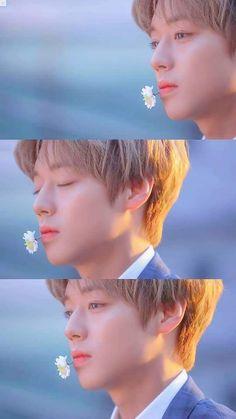 3 In One, One In A Million, Park Jihoon Produce 101, Korean Tv Shows, Korean Language, Personal Photo, Jinyoung, Wallpaper S, Korean Singer