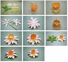 Bits of Paper: Fringed and Spring 3D Paper Flowers!