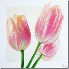 Spring Colours -tulipani-