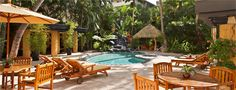 Enjoy Aqua Bamboo Waikiki's tropical oasis - a retreat from the busy shopping areas. #waikiki #hawaii #aquahotels #aquabamboowaikiki
