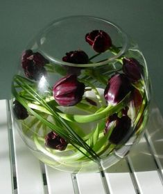 Tulips in a Glass Fish Bowl ~ Photo: Blooms for Business / Mooky Chick