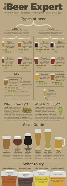 Infographic provides guidance for non-craft beer drinkers Beer Guide, types of beer, become a beer expert. Ever stand in the liquor store wondering what new beer to try yet thinking whether you will like it? All Beer, Wine And Beer, Beer 101, Good Beer, What Is Beer, Sake Wine, Beer Brewing, Home Brewing, Beer Types