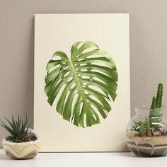 MI1593_quadro_costela_de_adao_29x41_kb1 Frame Wall Decor, Framed Wall Art, Framed Art Prints, Wall Art Decor, Poster A3, Garden Styles, Box Art, Watercolor Art, Plant Leaves