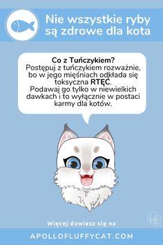 Twój kot uwielbia ryby? Niestety tuńczyk to nie jest dobry wybór dla zdrowia Twojego pupila. Dowiedz się więcej o rybach w diecie kota w moim artykule. Fluffy Cat, Blog, Diet, Blogging
