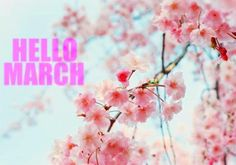 March is going be a good month.....I could feel it!