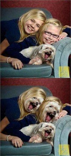 The Dog Photobomb