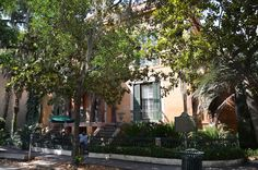 This will give you Wander Lust for Savannah!
