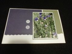 These gorgeous flowers are from our garden, and another handmade card using the photo Norm took of them.