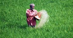 New fertiliser policy must look at setting JVs abroad http://www.moneylife.in/article/new-fertiliser-policy-must-look-at-setting-jvs-abroad/38795.html @suchetadalal @Moneylifers