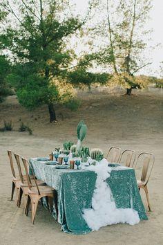 velvet tablecloth