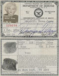 Marilyn Monroe's Military ID Card used when performing for the US troops in Korea 1954 Classic Hollywood, Old Hollywood, Marilyn Monroe Artwork, Marilyn Moroe, Imperfection Is Beauty, Norma Jeane, Amy Winehouse, Banksy, Movie Stars