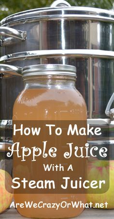 Juicer How To Make Apple Juice With A Steam Juicer Make Juice, Then Make Yummy Recipes With the Juice Pulp! Juicing the whole family involved with kid Juicer Recipes, Canning Recipes, Smoothie Recipes, Smoothies, Freezer Recipes, Budget Recipes, Steam Juicer, Homemade Apple Juice, Canning Apples