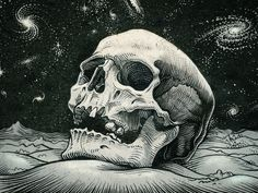 skull pictures for desktop JPG 790 kB Skull Wallpaper, Wallpaper Backgrounds, Wallpapers, How To Draw Galaxy, Crane, 1366x768 Wallpaper, Skull Pictures, Wild Pictures, Spiral Galaxy