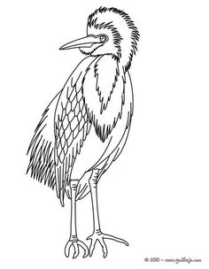 Crane Coloring Page You Can Also Color Online Your In This And Others With Our Library Of