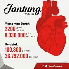 Fakta tentang Jantung manusia . Memompa darah 2.200 galon per hari 8.030.000 galon per tahun 481.800.000 selama 60 tahun beratnya kira2 345.000 ton . Berdenyut 70 kali per menit 100.800 per hari dan 36.792.000 kali dalam setahun . Kalau diambil usia rata-rata manusia maka jantung yang ajaib itu berdenyut 2.207.520.000 kali tanpa henti . Apakah ada pompa lain selain jantung yng dapat melakukan pekerjaan berat dalam waktu 60 tahun tanpa perawatan dan perbaikan ?? padahal ia hanya sebesar…